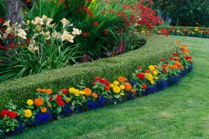 How Does Your Garden Grow: Tips For Hiring A Landscaper Iowa City